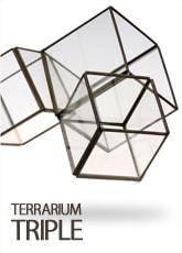 テラリウム トリプル|インテリア雑貨